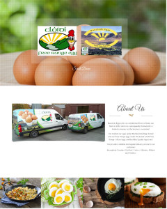 Bunclody Eggs Ltd